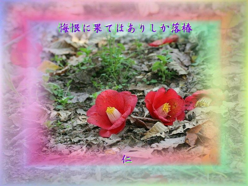 e0017651_19440640.jpg