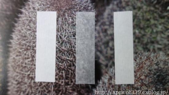 白無地マスキングテープを比較! カモ井加工紙(mt)&無印良品&ダイソー_c0293787_11003637.jpg