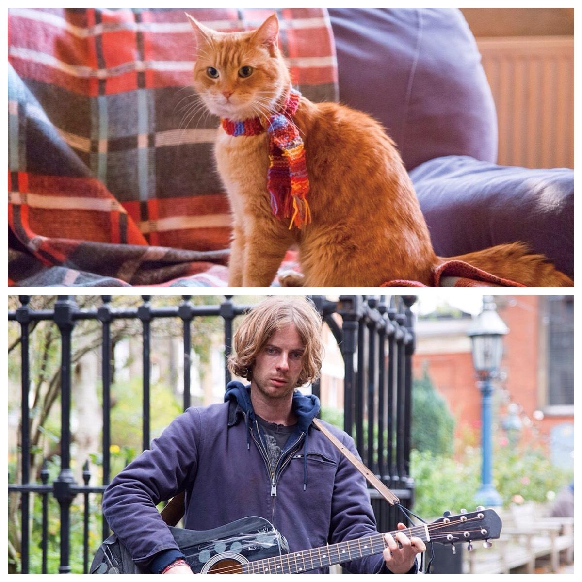 そして今週の休みわ ボブと言う名の猫を 観た訳です (o^^o)_f0039487_17103749.jpg