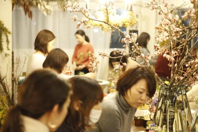 桜の開花_d0086634_16584825.jpg