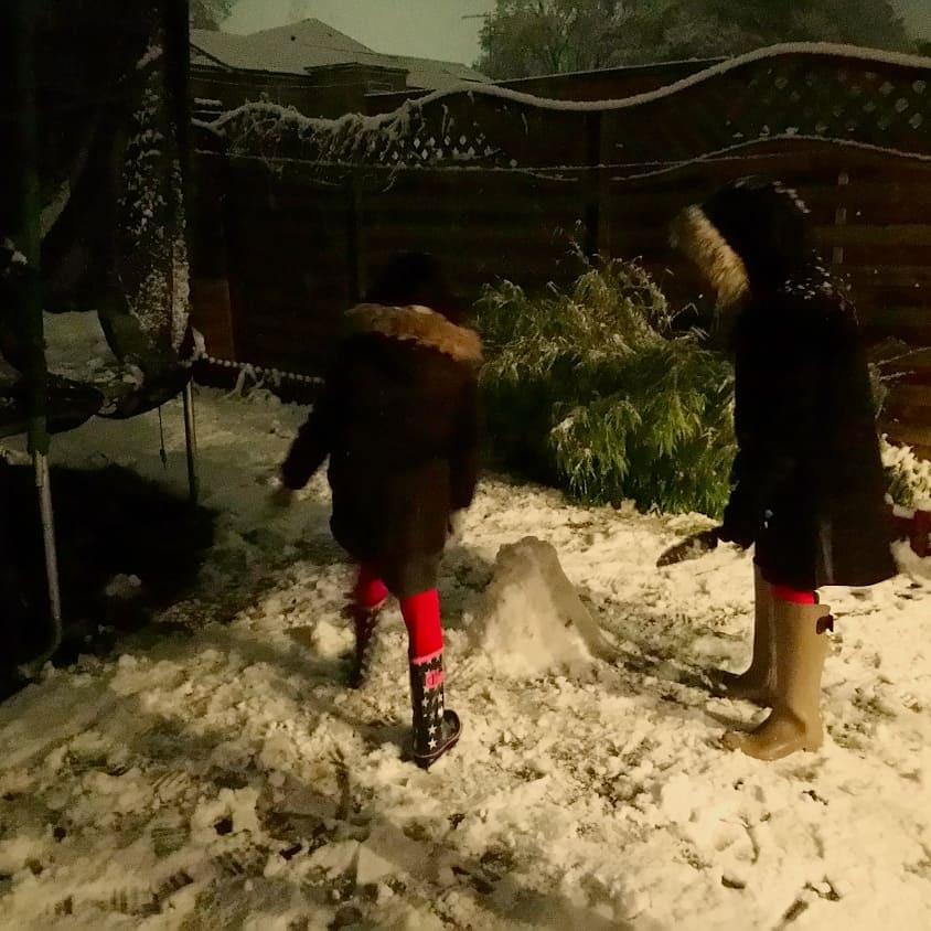 久々に雪が降る!!!  [動画]  その2_b0167736_08134705.jpg