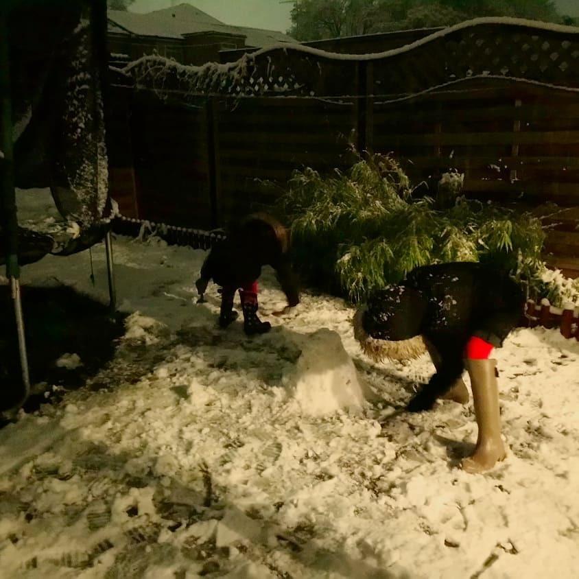 久々に雪が降る!!!  [動画]  その2_b0167736_08140984.jpg