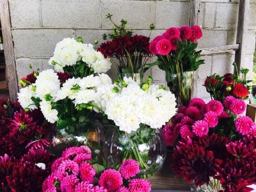 アロマでリラックス〜3.4月の香り〜_f0168650_12060010.jpeg