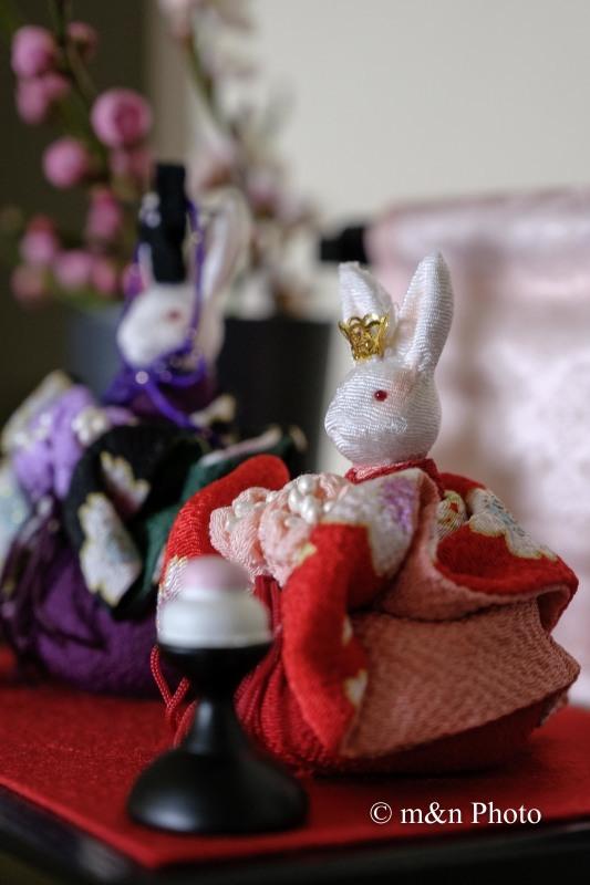 雛祭_e0321360_00213021.jpg