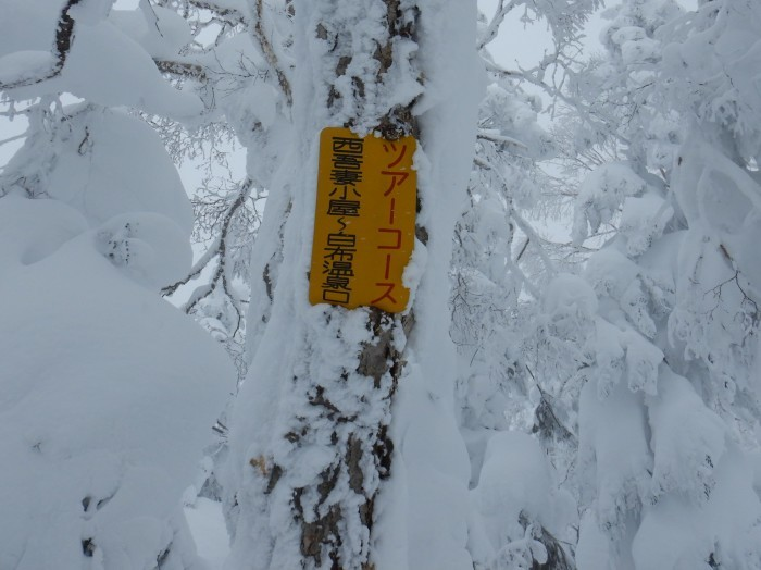 西吾妻山・若女平コース ~ 2019年1月26日_f0170180_10185448.jpg