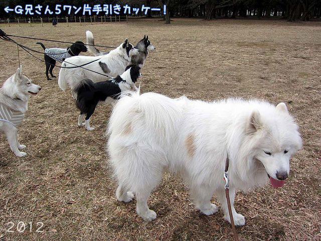 おっきな公園の思ひ出_c0062832_18362932.jpg