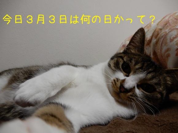 c0259945_18082337.jpg