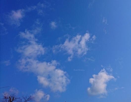 3/3(日)       おやすみなさい☆_d0362666_19423157.jpg