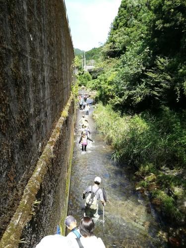 川歩き_e0123469_15152380.jpg