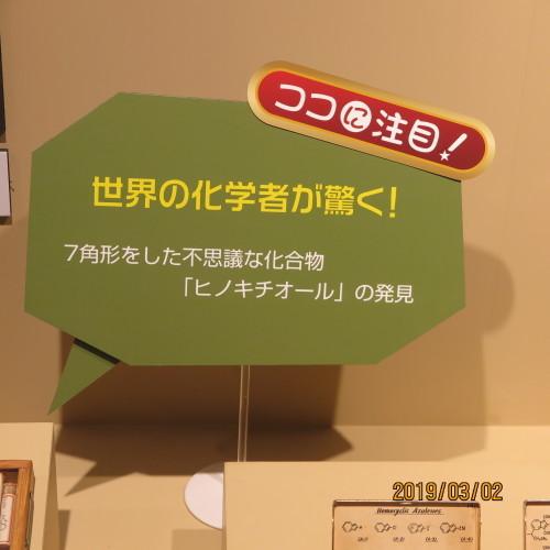 日本を変えた千の技術博の3度目の見学 ・ 7_c0075701_17464405.jpg