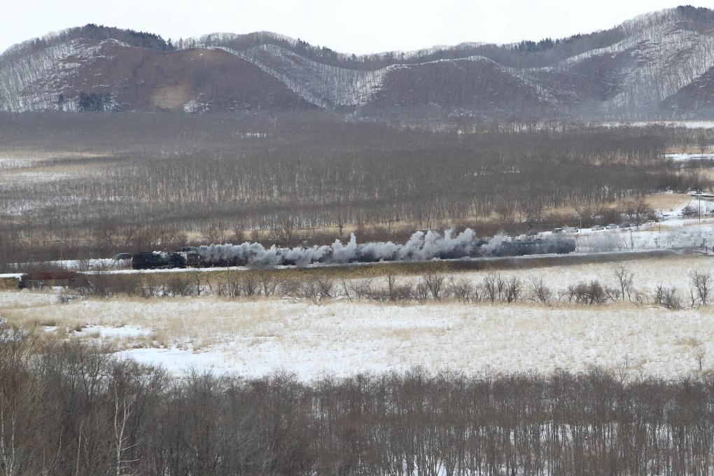 煙をまとって湿原を走る汽車 - 2019年冬・釧網線 -_b0190710_22475308.jpg