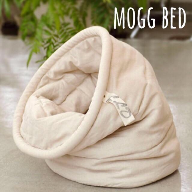 ☆ mogg bed ☆_d0060413_18481969.jpg