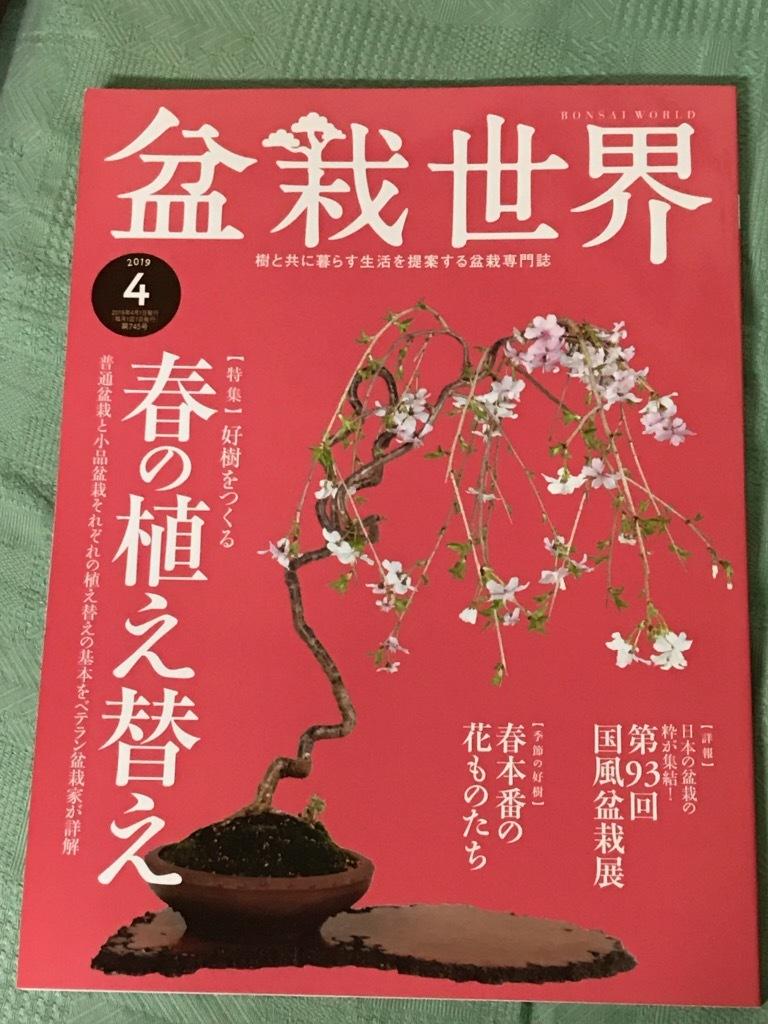 盆栽世界2019.4月号_f0170915_11020749.jpg