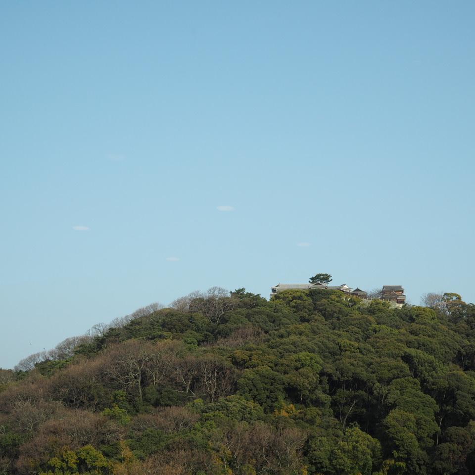 松山へ_b0206421_11132800.jpg