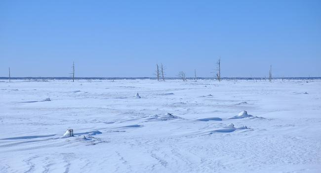 「真冬の知床羅臼根室の旅 野付半島 氷平線ウォーク」_a0000029_21341412.jpg