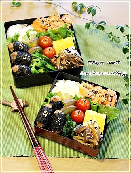 月曜鮭ほぐし弁当と今日のわんこ♪_f0348032_17493373.jpg
