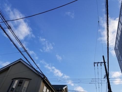 雨上りの黄昏の匂い_e0016828_10041803.jpg