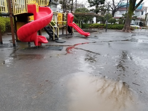 雨上りの黄昏の匂い_e0016828_10083646.jpg