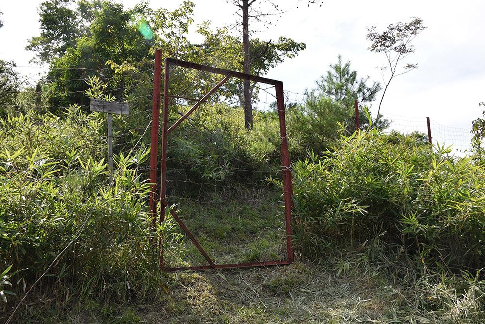 越前朝倉氏発祥の地、但馬朝倉城跡を訪ねて。_e0158128_20491568.jpg