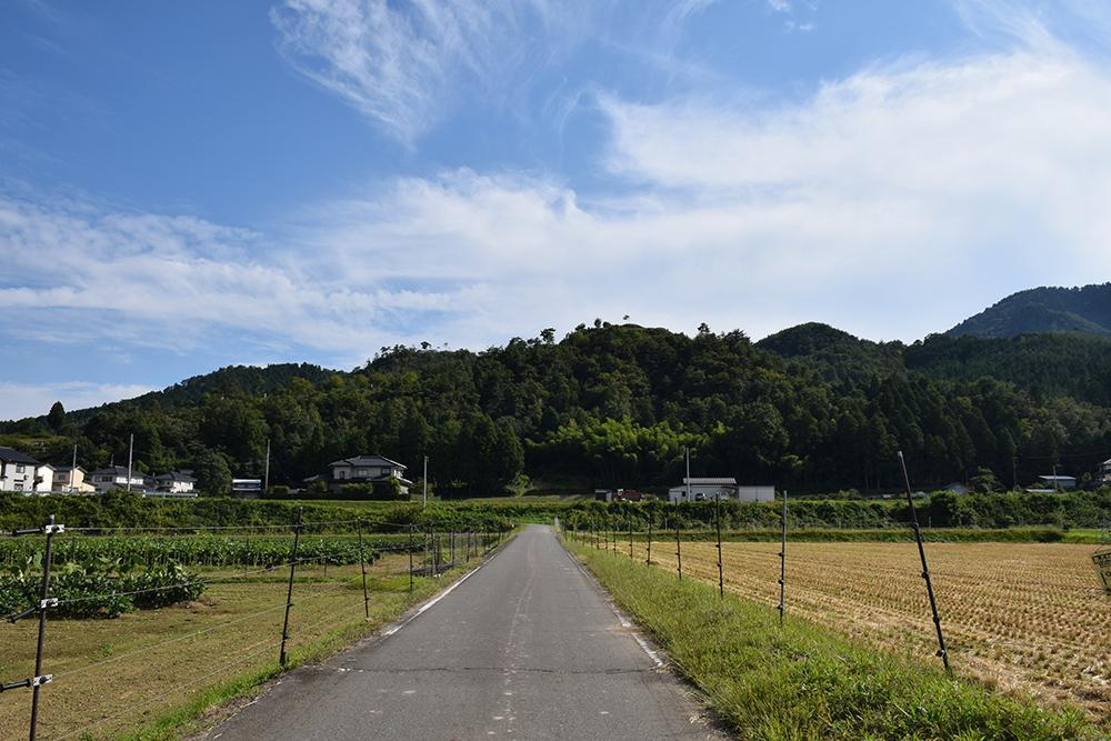 越前朝倉氏発祥の地、但馬朝倉城跡を訪ねて。_e0158128_21153510.jpg
