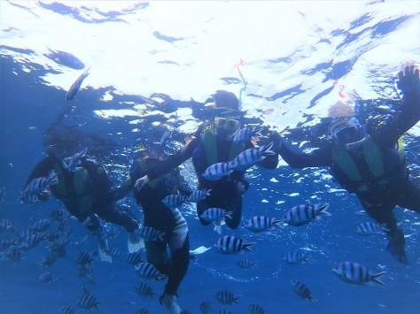 3月5日サンゴの日!!くるくる変わる気候ですね~~~!_c0070933_20493324.jpg