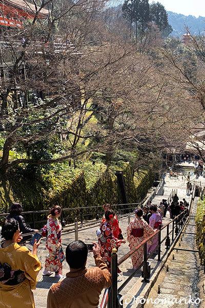 コパリオ一家とぶらり京都の旅_c0024345_11134804.jpg
