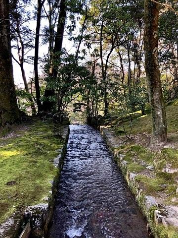 金沢の旅①~どこから観ても完璧の美「兼六園」_e0078071_19432599.jpg