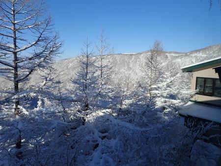雪景色の朝_e0120896_08290601.jpg