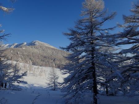 雪景色の朝_e0120896_08292464.jpg