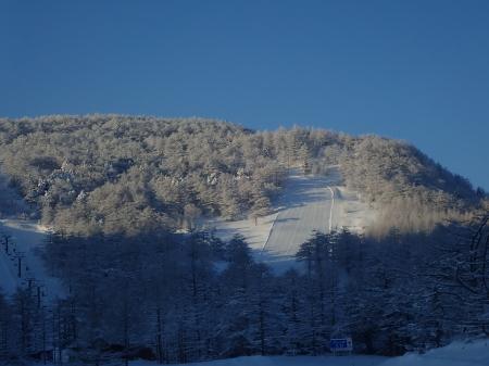 雪景色の朝_e0120896_08294830.jpg