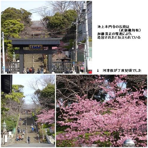 池上本門寺と池上梅園へ_c0051105_16254106.jpg