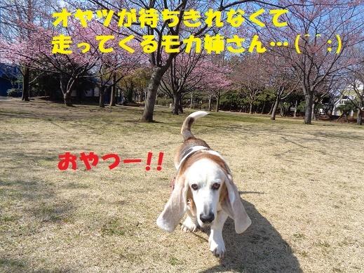 f0121712_15405388.jpg