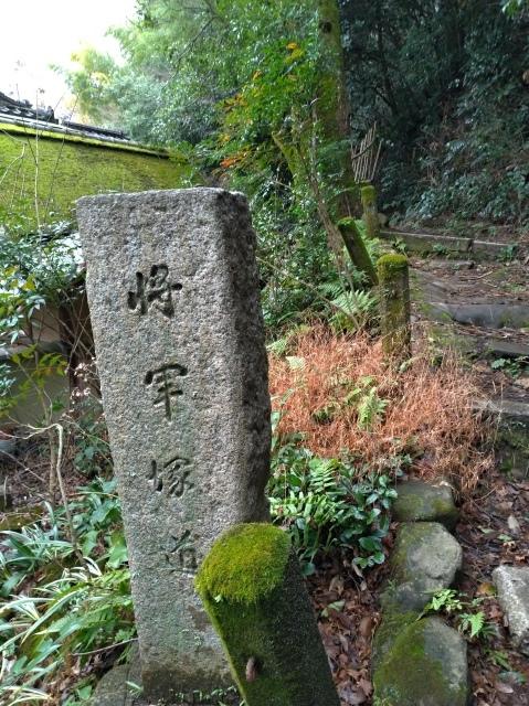 2019早春の京都と大津をめぐる (4) 京都東山の山頂、将軍塚に登る。_f0100593_09135747.jpg