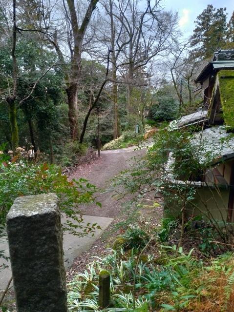 2019早春の京都と大津をめぐる (4) 京都東山の山頂、将軍塚に登る。_f0100593_09140420.jpg
