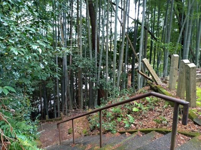 2019早春の京都と大津をめぐる (4) 京都東山の山頂、将軍塚に登る。_f0100593_09163861.jpg