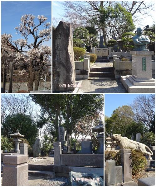 池上本門寺と池上梅園へ_c0051105_10501016.jpg