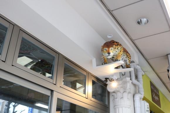 プラザ修学院 (京都市左京区)_c0001670_22154101.jpg