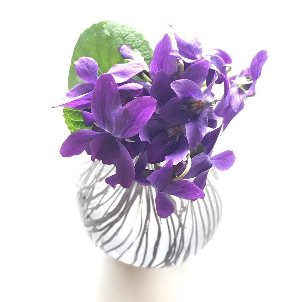 中野由紀子さんの花器にスミレを_b0353974_13520870.jpg