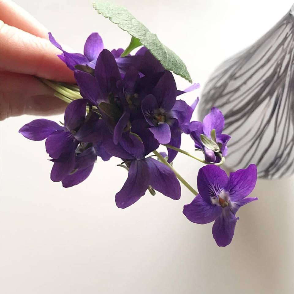 中野由紀子さんの花器にスミレを_b0353974_13521681.jpg