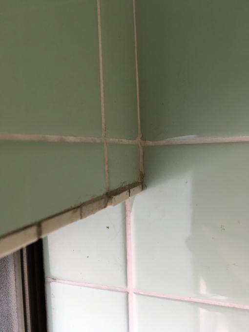 お風呂場その5。下側のタイル貼っていきますー!_f0182246_15235735.jpg