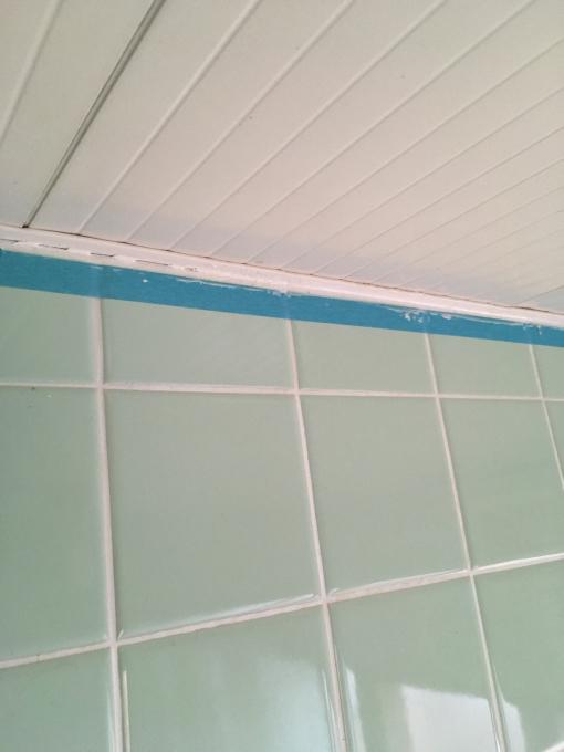 お風呂場その5。下側のタイル貼っていきますー!_f0182246_15282449.jpg