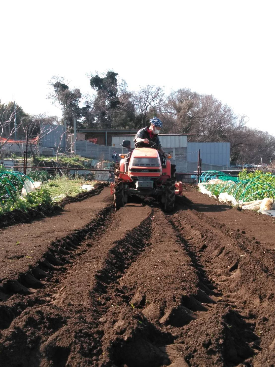 久々にトラクター 土が重たい今週はかなり雨が降りました_c0222448_18172505.jpg