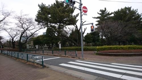 「青山墓地」_a0075684_10032795.jpg