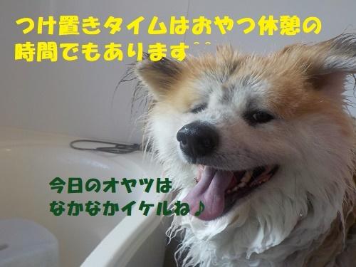f0121712_00151539.jpg