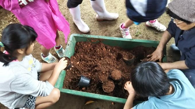第8回くんじゃん山学校 どんぐりを植えよう!_f0121321_16040654.jpg