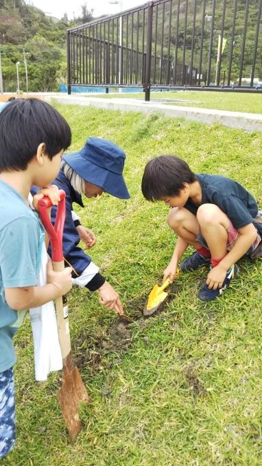 第8回くんじゃん山学校 どんぐりを植えよう!_f0121321_16171162.jpg