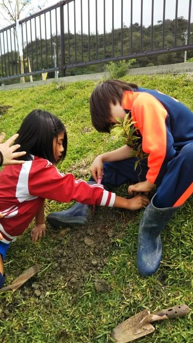 第8回くんじゃん山学校 どんぐりを植えよう!_f0121321_16182682.jpg