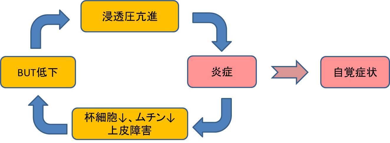 ドライアイのお勉強 その1 (1130)_f0088231_09392327.jpg
