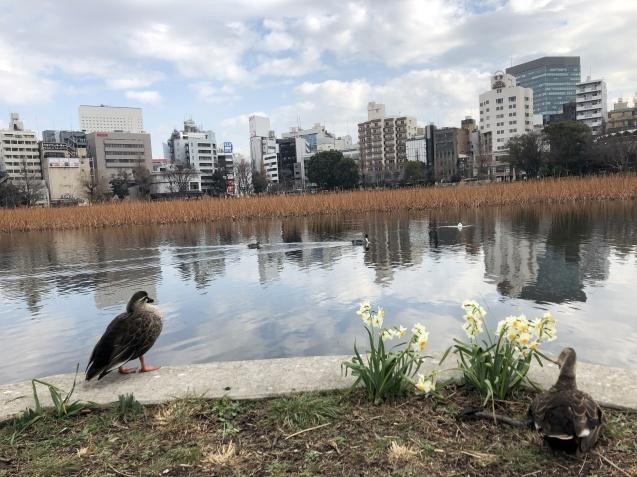 お散歩~~~_b0204691_15392230.jpg