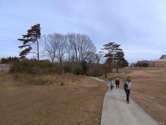 青葉の森3月観察会_f0100593_17032072.jpg